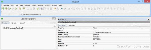 Ibexpert + crack serial download.